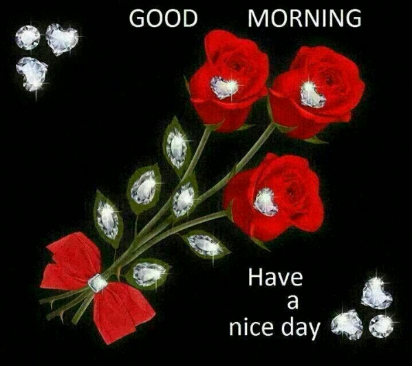 Good Morning Sunday Whatsapp : Good morning all have a nice day whatsapp forwards