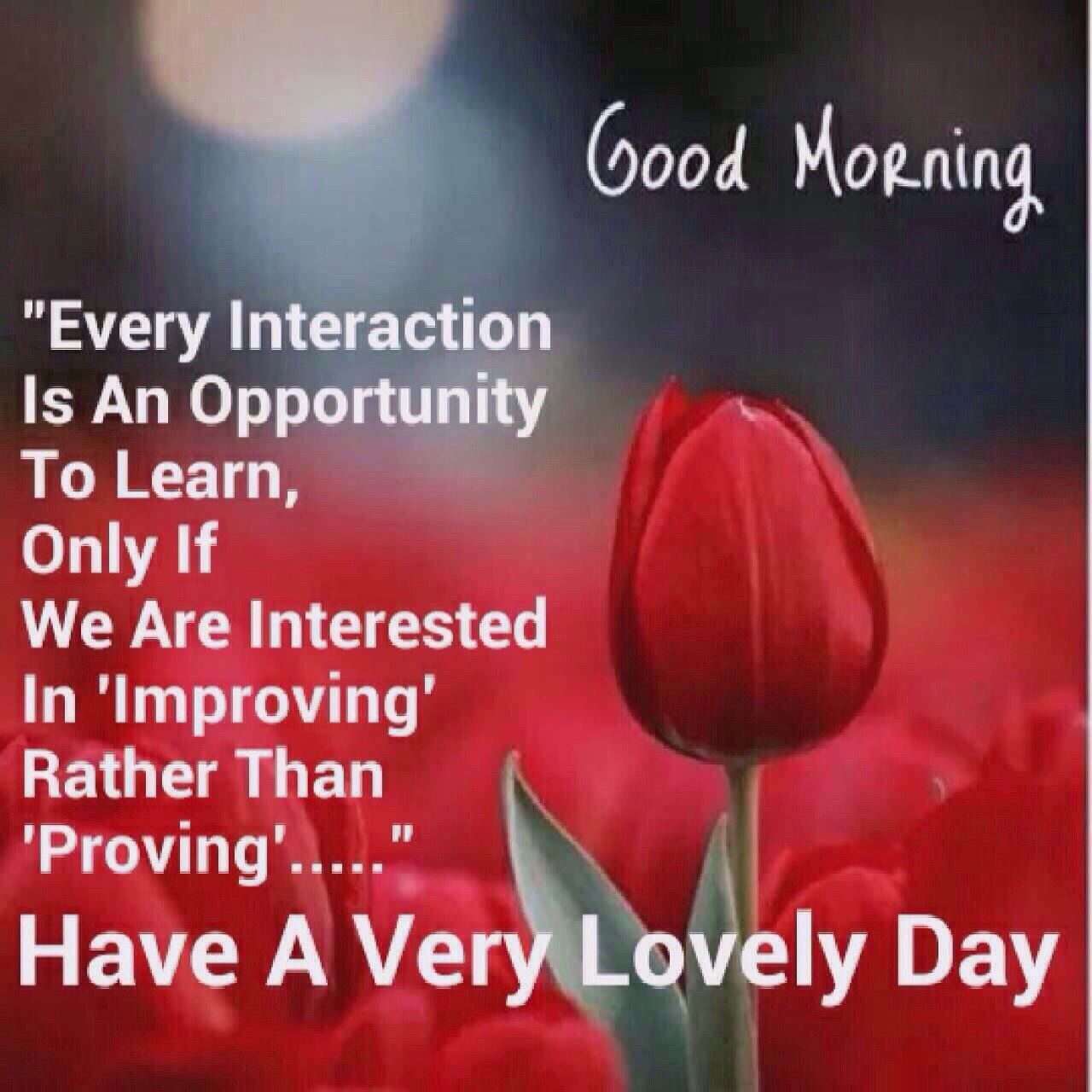 Have a lovely day - Whatsapp Forwards, Jokes, Riddles and