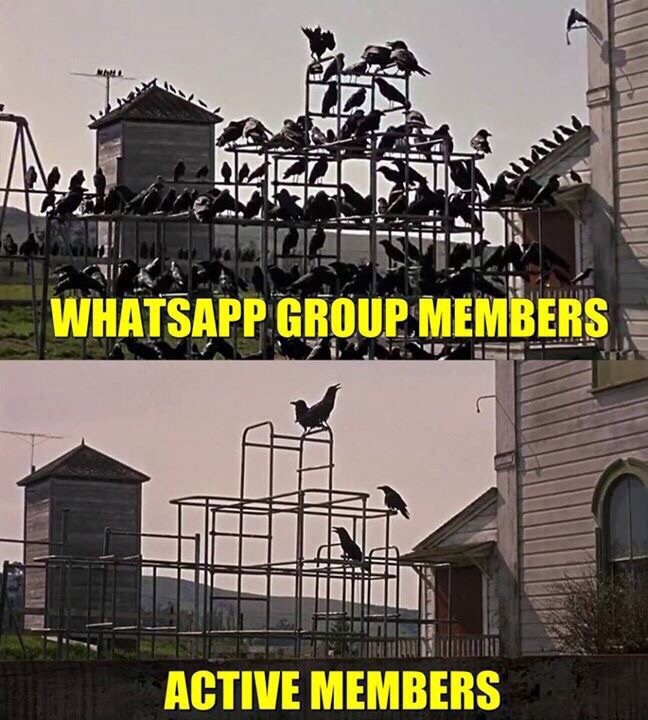 WhatsApp - Whatsapp Forwards, Jokes, Riddles and Puzzles