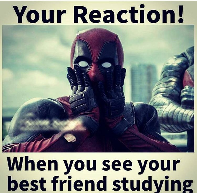 when friend is studying