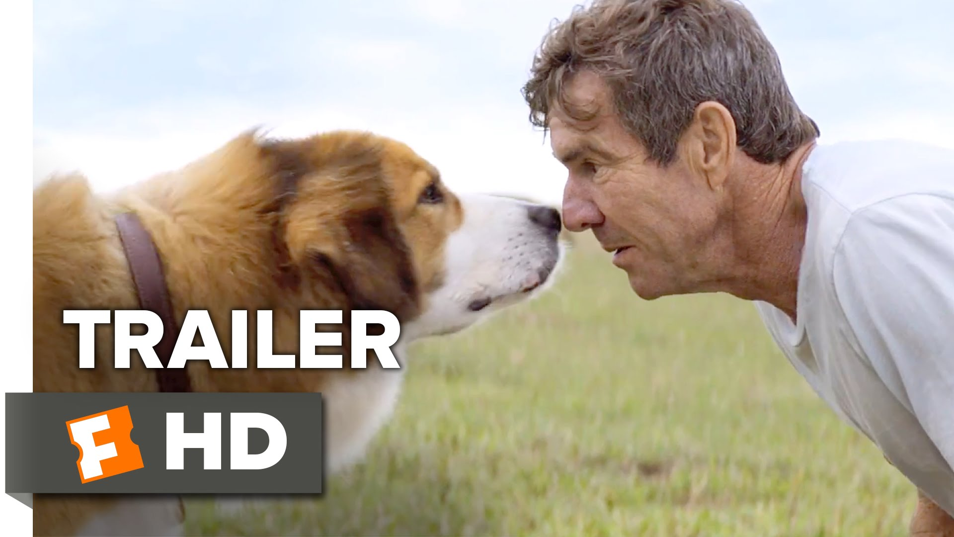Dog With A Purpose Movie Trailer